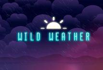 ทดลองเล่น Wild Weather